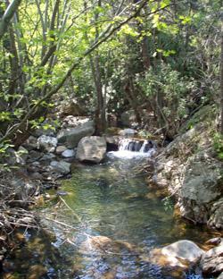 Creek in North Chios