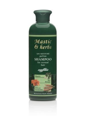Shampoo Normal